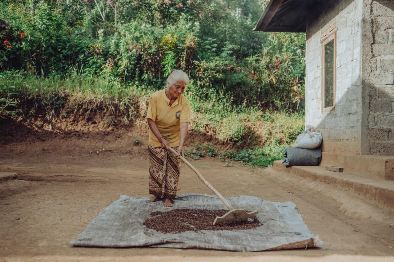 Banyak keluarga di desa-desa terpencil sekarang mengandalkan sedikit uang yang mereka peroleh dengan memanen cengkeh dan menganyam keranjang.