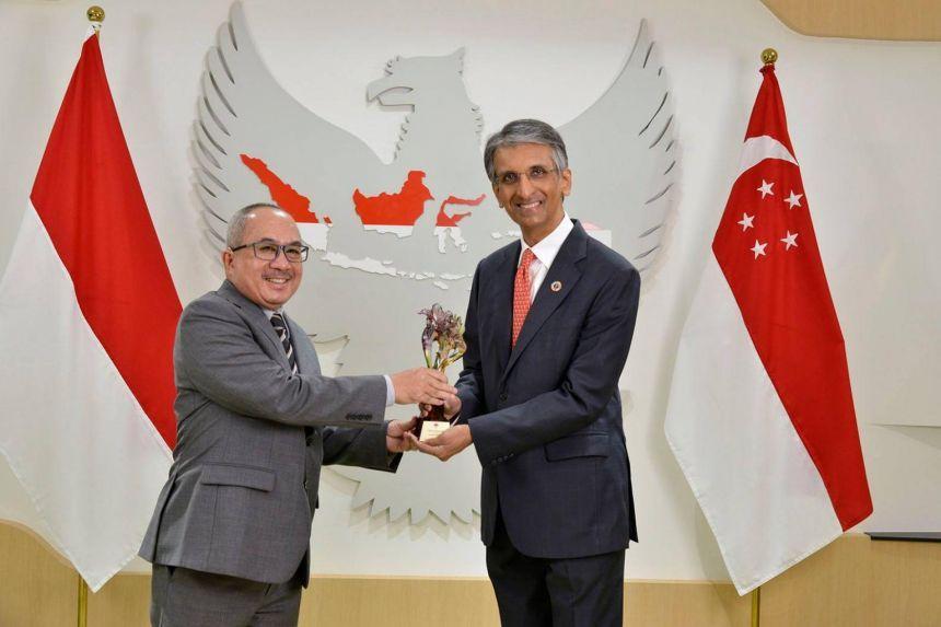 Temasek menerima penghargaan dari Indonesia atas upayanya dalam mempererat hubungan antara Singapura dan Indonesia